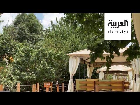 صباح العربية | عائلة من عسير تحول مزرعتها لمنتجع ريفي  - نشر قبل 2 ساعة