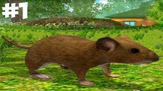 СИМУЛЯТОР Маленькой МЫШИ. Обзор игры про мышонка от ДЕТСКИЕ ИГРЫ детский летсплей