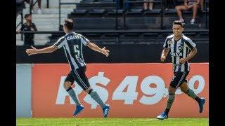 Veja os melhores momentos da vitória do Botafogo sobre o América-MG