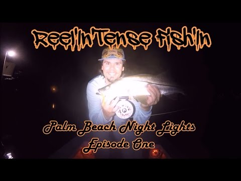 Reel'In'Tense Fish'In' - Palm Beach Night Lights - Episode 1 - Fly Fishing for Snook