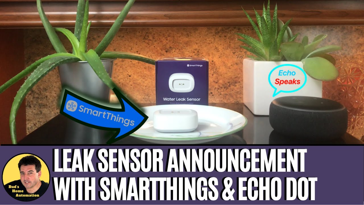 Water Leak Announcement On Your Echo Device