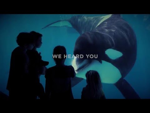 We Heard You And This Is How We're Changing | SeaWorld®
