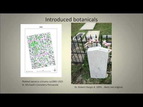 Pensacola Tombstones A Good Read