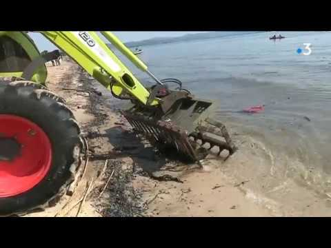 Nettoyage des plages à Hyères
