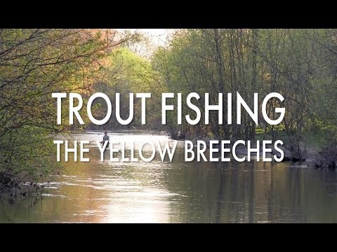 Trout Fishing Pennsylvania's Yellow Breeches