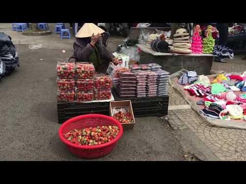 Chợ ĐÀ LẠT - áo Len, Hoa, Dâu Tây Và Người đi Bộ