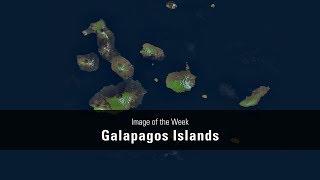 Landsat Mosaic of the Galapagos