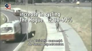 ¿Cómo consiguieron los holandeses sus ciclovías?