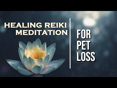 Healing Reiki Meditation for Pet Loss and Grief | Help for grieving, sadness, guilt | Reiki Master