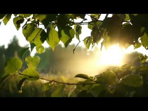 Sibelius - Violin Concerto in D minor op.47 Adagio Di Molto. Violin... Hilary Hahn