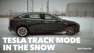 Tesla Track Mode In The Snow