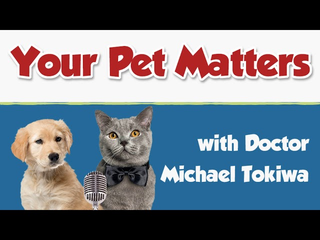 Aug 30, 2014 – Dr. Pope on Your Pet Matters Podcast,