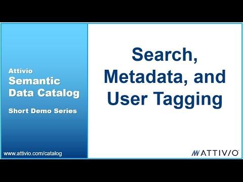 Attivio Semantic Data Catalog Metadata and User Tagging