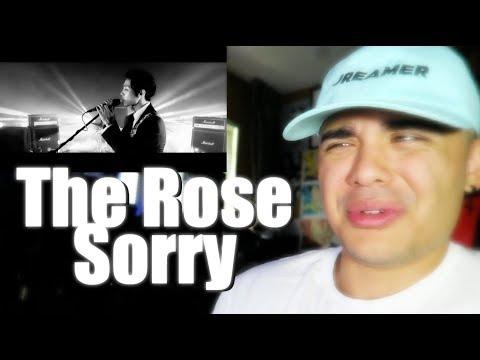 The Rose - Sorry MV Reaction