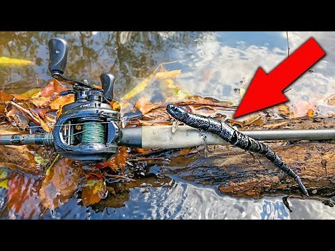 Do BIG BASS Eat Snakes? - Bass Fishing With Snake Lure