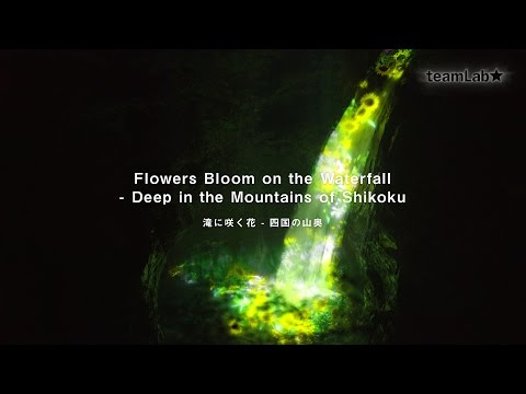 Flowers Bloom on the Waterfall - Deep in the Mountains of Shikoku / 滝に咲く花 - 四国の山奥