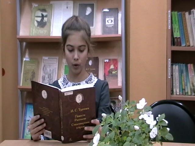 Изображение предпросмотра прочтения – ВикторияКочеткова читает произведение «Воробей» И.С.Тургенева