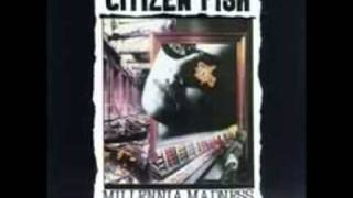 Watch Citizen Fish T V Dinner video