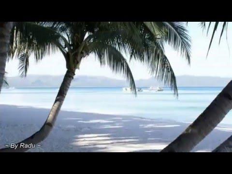 ♫ Aloha-he, komm nach MontegoBay ♫ BZN ♫