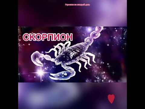 СКОРПИОН гороскоп с 30 ноября по 6 декабря 2020🌸гороскоп скорпион на неделю🌸скорпион сегодня🌸