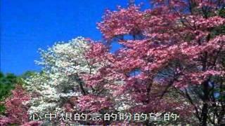 伍佰_浪人情歌_跑天下.flv