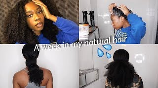 A REALISTIC WEEK IN MY NATURAL HAIR : TYPE 4 WASH N GO EDITION