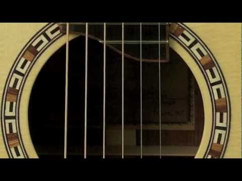 Lichty Guitar - Chechen SJ