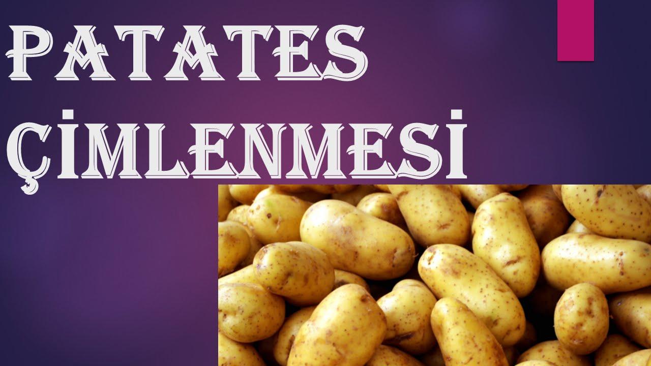 Haşlanmış Patatesin Bozulduğu Nasıl Anlaşılır