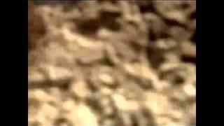 Древняя Греция(это было Презентация по културологии., 2013-05-01T07:43:33.000Z)