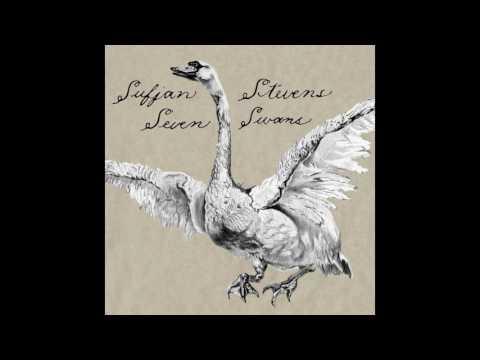 Sufjan Stevens - The Dress Looks Nice on You