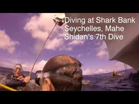 Diving at Shark Bank, Seychelles, Mahe