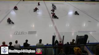 Sheffield Steelkings v Manchester Mayhem - British Para Ice Hockey