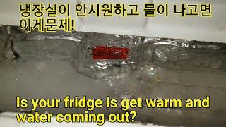 엘지냉장고 GN-R466FW 냉장실이 안시원하고 물이세…