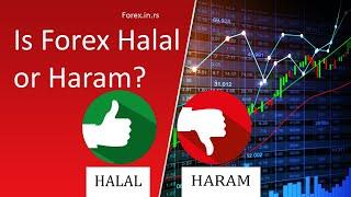 yra forex system haram
