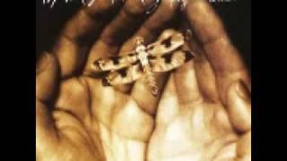 Dragonfly Summer -Michael Frank-
