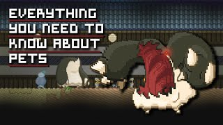 Starbound Tips | Everything you need to know about Pets
