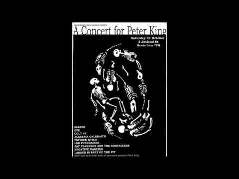 A Concert For PETER KING - JUTLAND STREET, DUNEDIN, NEW ZEALAND. 21/10/2017
