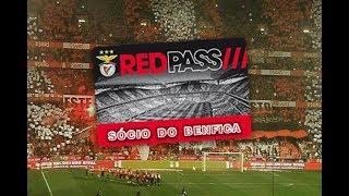 No Name Boys e Diabos Vermelhos ilegais? Não. Sócios do Benfica.
