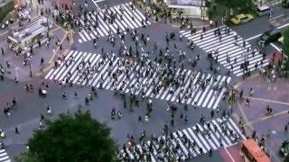 キャリタス就活新CM.