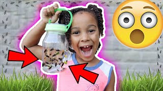 Cali Finds Lots of Cool Bugs | FamousTubeKIDS