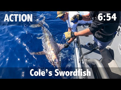 Cole's Sword: First Drop, First Swordfish.