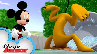Bow-Wow Bath Time! 🛀   Mickey Mouse Hot Diggity Dog Tales   Disney Junior