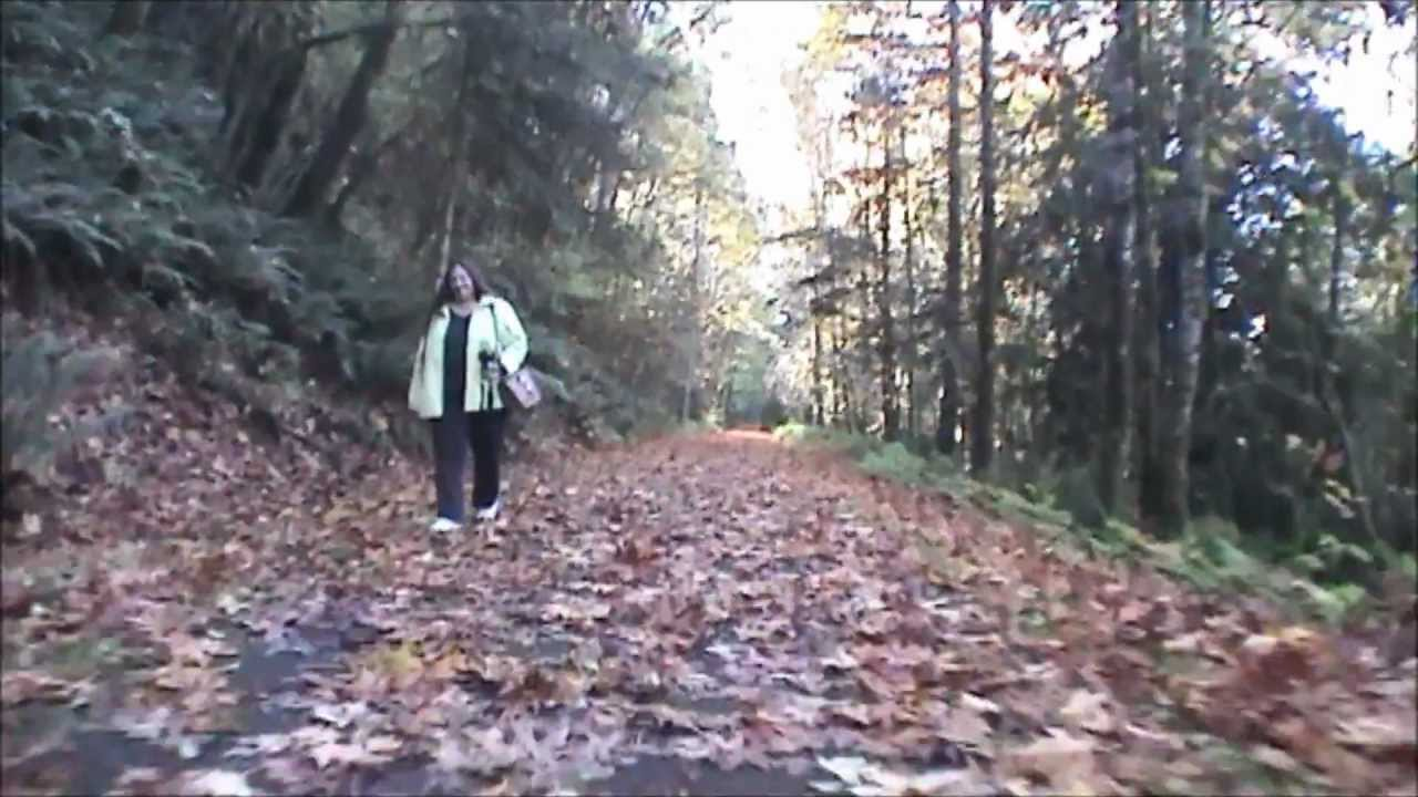 Banks Vernonia State Trail Cycling 80mph Youtube