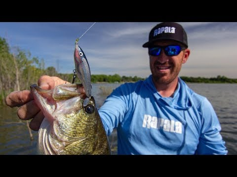 Target Bass With Single Prop Topwater Baits