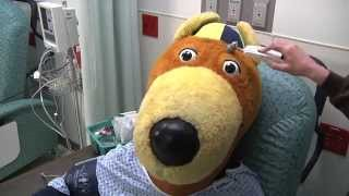 Cover Your Tail | Zippy Gets a Colon Screening at Summa Health System