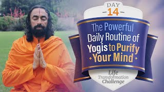 The Powerful Daily Routine of Yogis To Purify Your Mind   Day 14 of Life Transformation Challenge