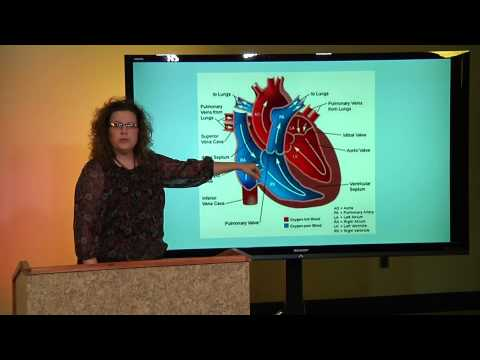 Critical Care Nursing: Basics of EKGs Module 1