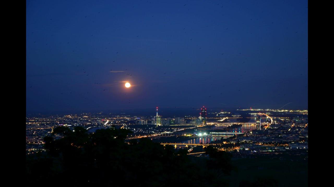 The Gentle Wien