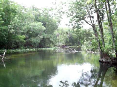 Ocklawaha River At Eureka, Florida