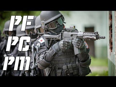 A Polícia Brasileira - PM   PC   PF